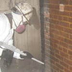 Starr technician Mold Remediation